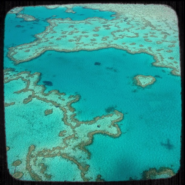 heart-reef-whitsunday