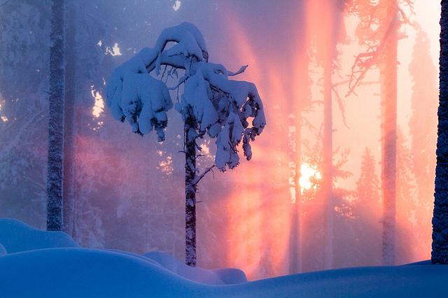 finlandia-informacion