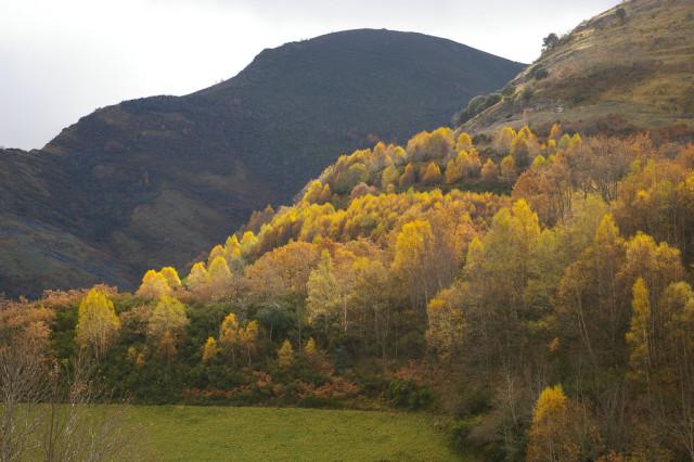 courel-rural-galicia