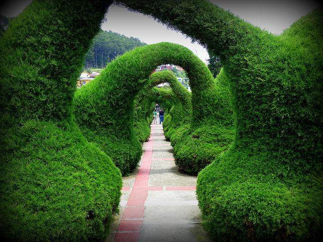 Entre los jardines m s curiosos del mundo el parque de for Jardines costa rica